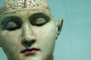 antique model of the human head with brain exposed