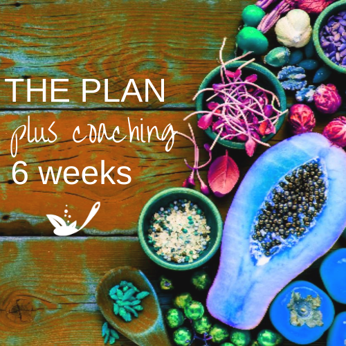 the plan plus coaching 6 weeks with orange wood and bright fruit