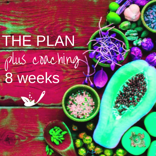 the plan plus coaching 8 weeks with pink wood and bright fruit