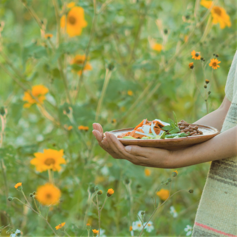 sunflower field with a person holding a plate with food on it